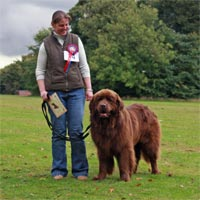 beginners obedience winner