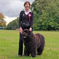 pre-beginners obedience winner