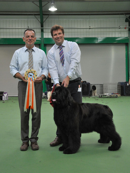 Best Veteran In Show - Chateaunewf The One I Love at Chateaunewf