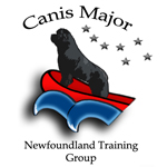 Logo of Canis Major working group