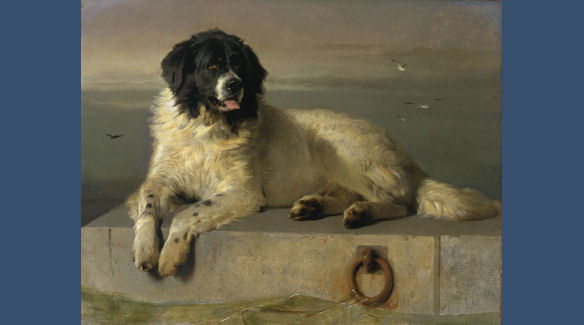 A Distinguished Member of the Humane Society by Sir Edwin Landseer