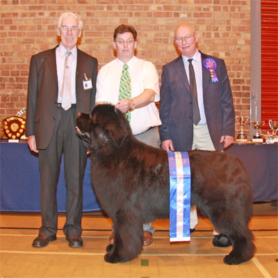 NNC President with Judge and BiS winning dog