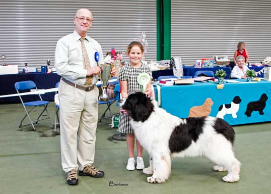 BEST LANDSEER IN SHOW