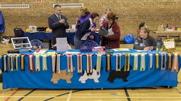 Committee Table & Rosettes