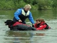 Picture of black Newfoundland dog in life jacket with owner stood behind helping person from water